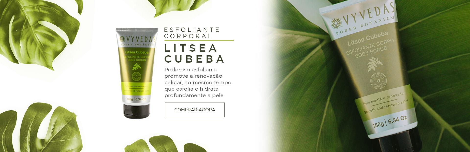 Banner Esfoliante Litsea